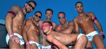 South florida bear pool gay