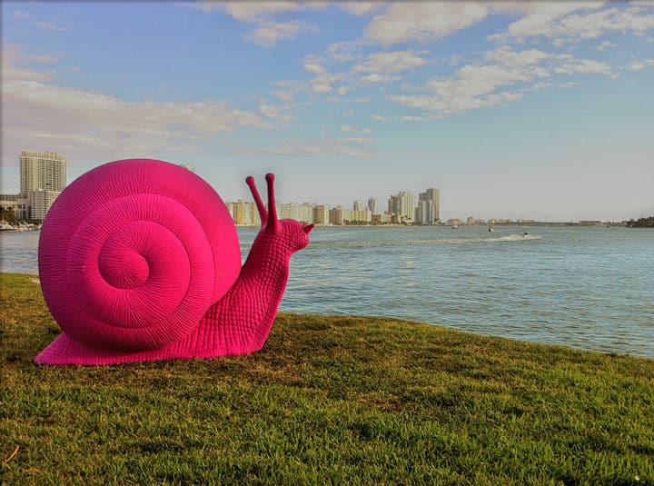 snail-art-basel