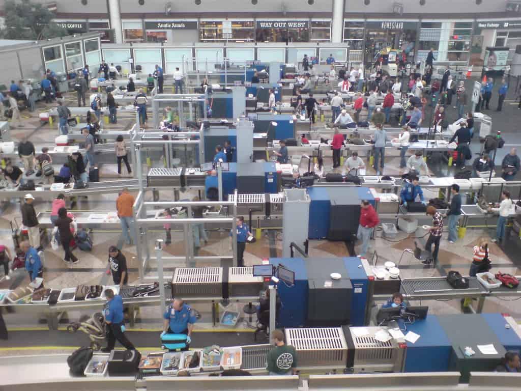 Image result for TSA lines